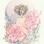Rose Princess