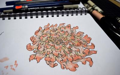 Chartpak Marker Sketch